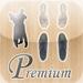 Ballroom Dancing Basics - Premium Edition!